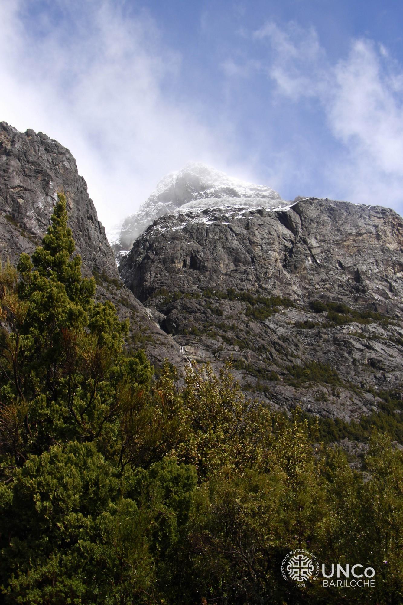 Vista del Cerro López desde el Cementerio del Montañes. Amigos y familiares contaron cóndores por docena.