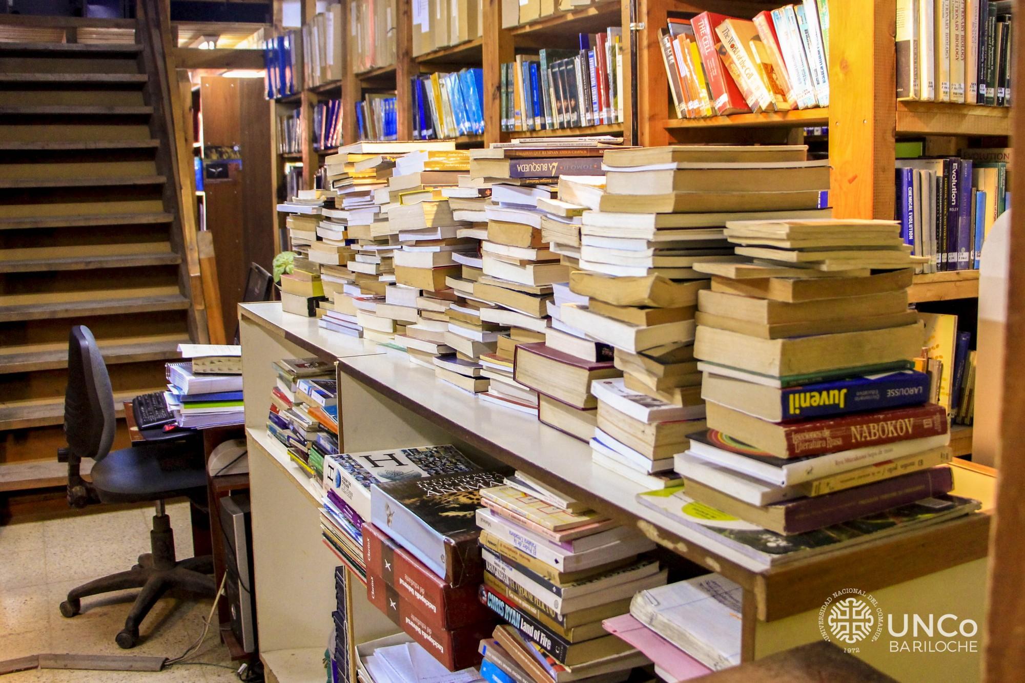 Fotos entrega libros (3 de 4)