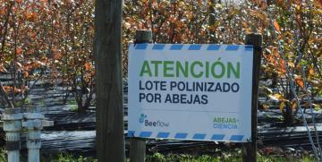Un premio a la innovación y la transferencia. Entrevista a Agustín Saenz